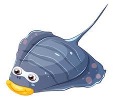 Um peixe chato