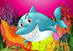 Een grote vis