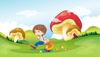 Uma criança e os cogumelos