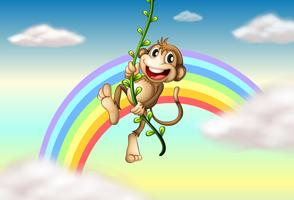 A monkey hanging on a vine plant near the rainbow