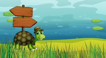 Uma tartaruga perto das placas de flecha de madeira