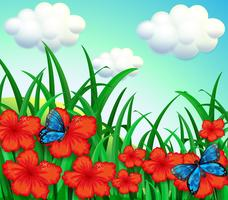 A garden with red flowers and blue butterflies