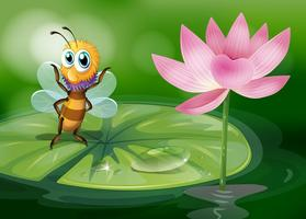A bee above a waterlily
