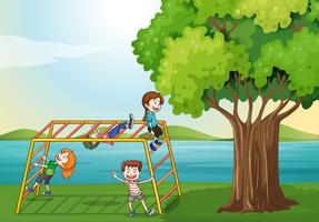 Kids climbing near the tree