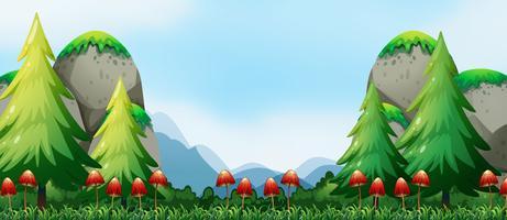 Mushroom and field