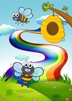 A hilltop with bees and a beehive near the rainbow