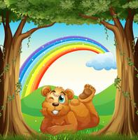 A smiling fat bear at the forest and a rainbow in the sky