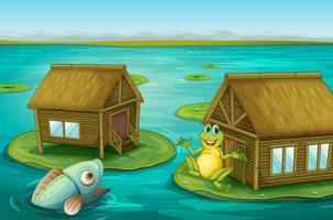 Cabaña de ranas