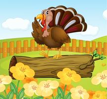 A turkey above the wood inside the fence vector