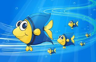 debaixo de peixe de água