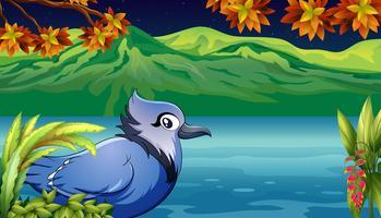 Um pássaro assustador perto do rio