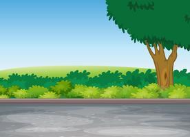 träd bredvid vägen