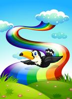 A bird flying near the rainbow