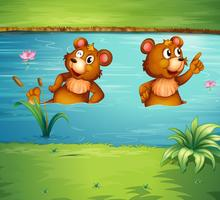 Två djur i dammen
