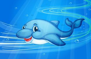 um peixe