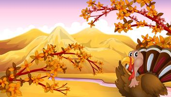 A turkey in an autumn view