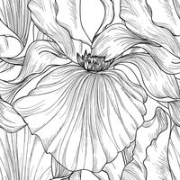 Floral seamless pattern. Flower iris engraving background.