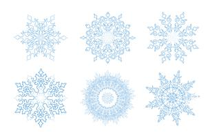 Sow ison set. Snowflake winter holiday lacy sign. Greeting card decor