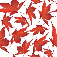 Autumn leaves background. Floral seamless pattern. Fall leaf nature