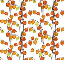 Floral fall seamless pattern Physalis background. Flourish garden texture