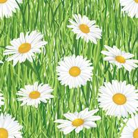 Floral seamless pattern. Meadow summer flowers