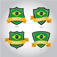 Insignia de la bandera de Brasil vector
