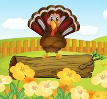 A trunk with turkey inside the fence vector