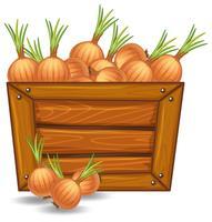 Zwiebel auf Holzschablone