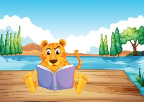 A serious tiger reading a book at the diving board
