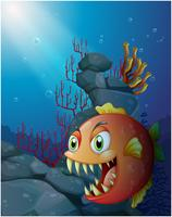 Scary piranha under the sea near the rocks