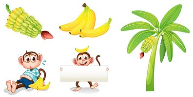Bananas and monkeys with an empty signboard vector