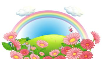 Een regenboog en een tuin met bloemen in de heuvels