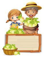 Agricoltore con lattuga su tavola di legno
