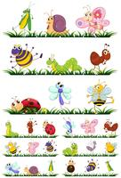 Different types of insects on grass