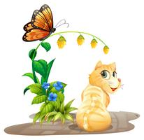 Cat and butterfly