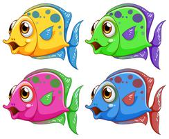 Four colorful fishes