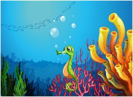 Un caballito de mar cerca de los arrecifes de coral.