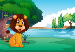 A lion sitting along the river