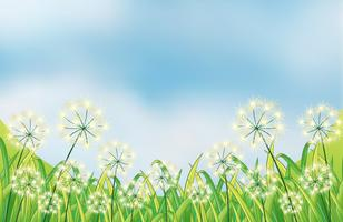 As ervas daninhas crescentes sob o céu azul