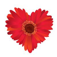 red flower with love heart shape.