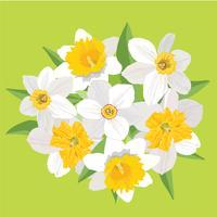 Blombukett. Blomram. Blomstra hälsningskort. Blommande blommor isolerade på vit bakgrund