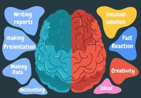 Human Brain Hemisphere in Black Background