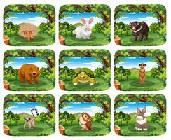 Set of animals in nature scenes