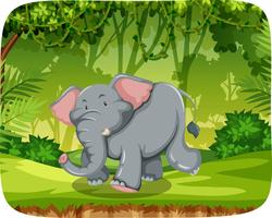 Gullig elefant i naturen scen
