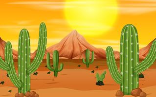 Una escena del atardecer en el desierto