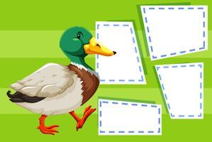 Um pato na nota em branco