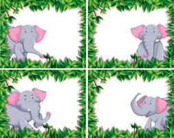 lindo elefante conjunto de cuatro