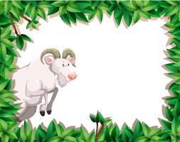 Marco de la naturaleza con cabra