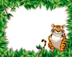 Tiger in nature frame