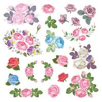 Mega set collection of different roses with leaves isolated on white background. Vector illustration